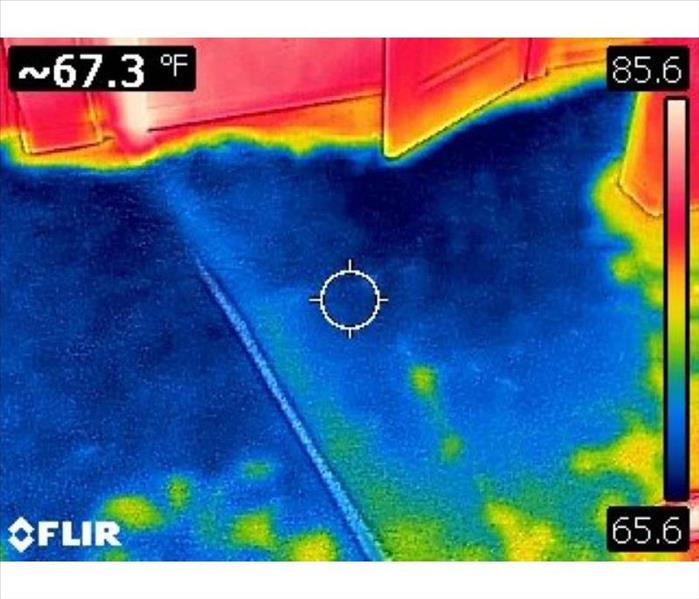 Infrared Photo of water damage on carpet