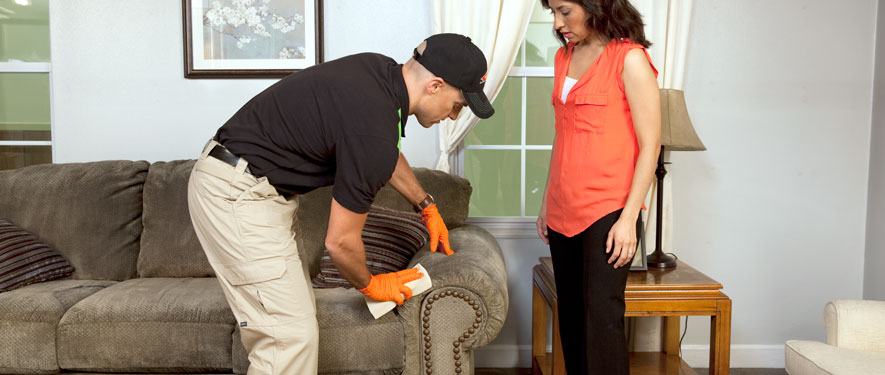 Folsom, CA carpet upholstery cleaning
