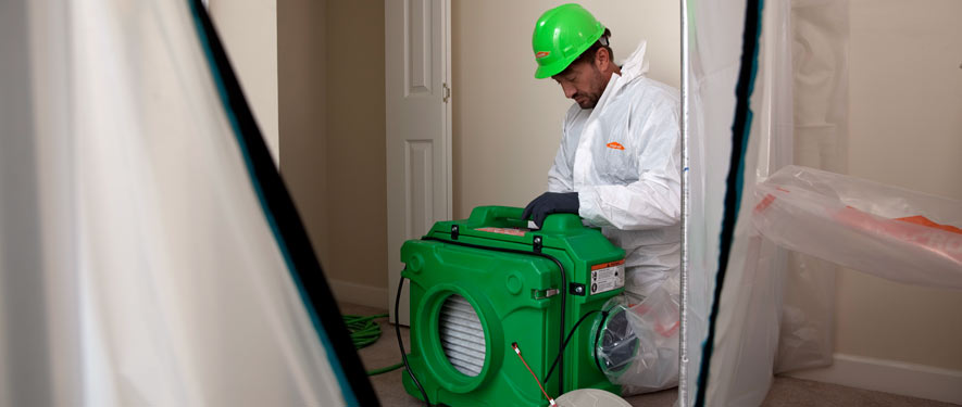 Folsom, CA mold cleanup